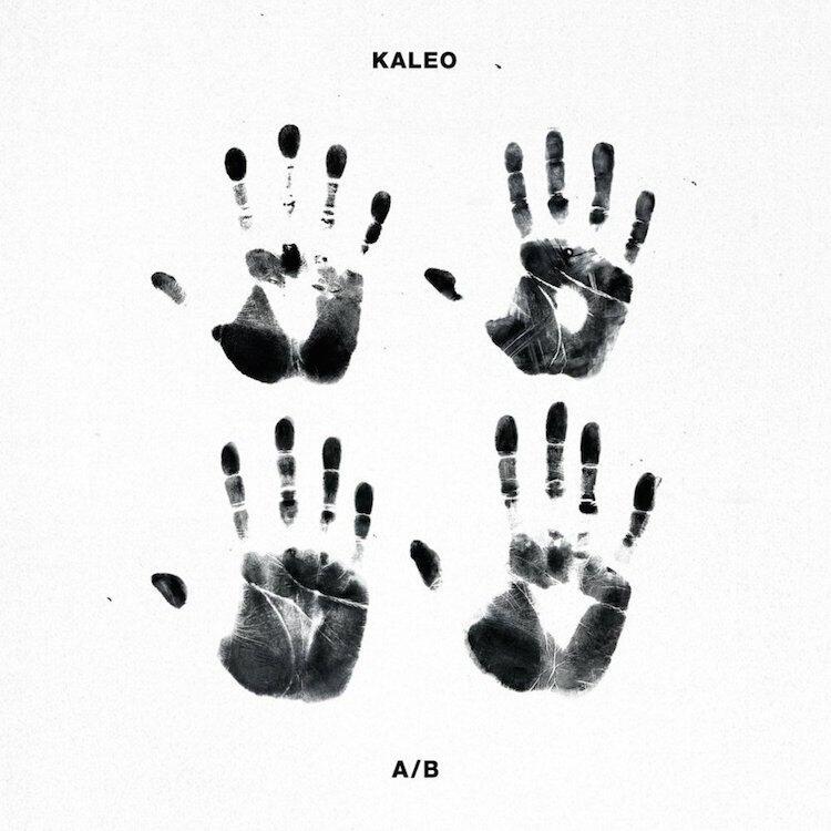 Image result for kaleo vinyl art