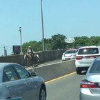Guy On Horseback Snarls Traffic On Bridge In NYC (VIDEO)