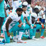 Union Asks Cops to Boycott Dolphins Games