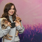 These Musicians Holding Puppies Will Melt You