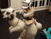 Dad Makes Incredible 'Star Wars' Halloween Costume For Son