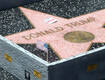 Trump Star Vandalized With Sledgehammer