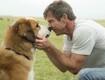 Disturbing Video of Scared Dog On Movie Set Investigated (VIDEO)