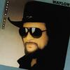 Rose In Paradise - Waylon Jennings
