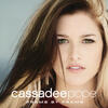 Wasting All These Tears - Cassadee Pope