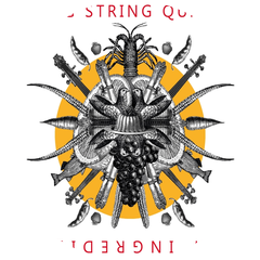 Spring String Quartet
