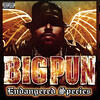 Still Not a Player - Big Pun feat. Joe
