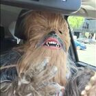 Now Chewbacca Puts On A Mask Of That Lady