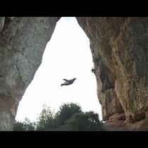 Bat/Cave