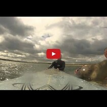Seal Jumps On Guys Surf Board
