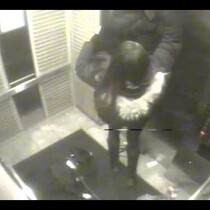 Watch Girl Save a Dog in Heroic Act from hanging itself inside a Elevator