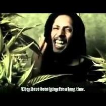 (Video) Julian Marley - BOOM DRAW!!