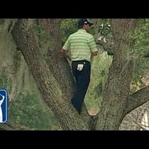Ridiculous Golf Shots