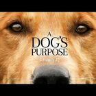THIS movie...A Dog's Purpose