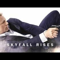 Skyfall Rises (Bond Meets Bane)