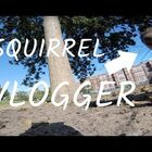 WATCH: Squirrel take GoPro and gives best POV EVER!!!
