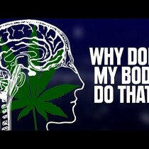 Why Does Your Body Do That While Smoking Pot