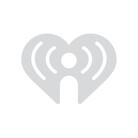 A Lamborghini Towing A Trailer Full Of Goats WATCH