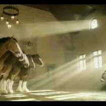 OLD SKOOL Super Bowl Budweiser Commercials, HAHA.
