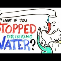 What if you stopped drinking water?