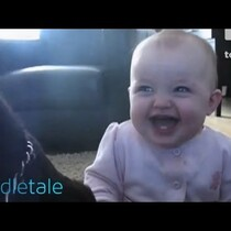 Baby Laughs Hysterically at Dog Eating Popcorn