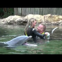 WATCH: Dolphin Wedding Proposal