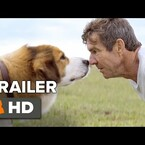 """""""A Dog's Purpose"""" Movie Trailer Will Make You Feel All The Feels (WATCH)"""