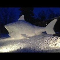 VERY COOL: Snow Shark Progression