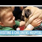 Doug the Pug Visits Inspires Sick Kids with Hospital Visit