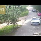 Tiger Attacks Woman In Wildlife Park (Security Video)