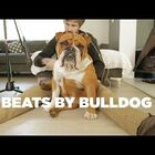Bulldog Fans...this BEAT is for you!!!