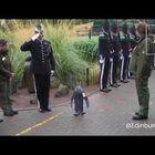 Sir Nils Olav The Penguin Promoted To Brigadier