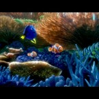 A New 'Finding Dory' Trailer Is Here!