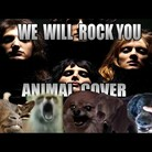 "Queen's ""We Will Rock You"" Covered By Viral Animals"