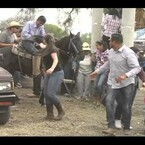 VIDEO.-Ataque de Abejas en pleno Jaripeo