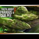 The Truth about Asparagus and Your Pee!