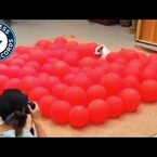 Meet Twinkie: Fastest Time To Pop 100 Balloons By Dog - Guinness World Records