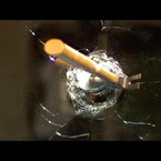 A Hammer Thrown Into A Mirror At 120,000fps (Video)