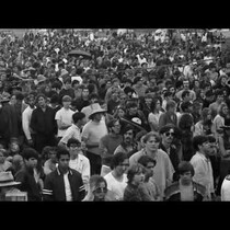1969 Palm Beach Pop Festival Film Premiere