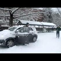 Snowball Fight Escalates