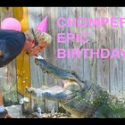 So How Do You Throw A Birthday Party For An Alligator?