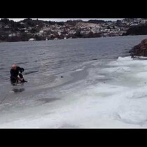 Man Saves Dog After Pup Falls Through Ice In Norway