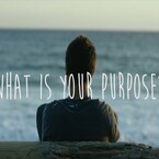 What is your purpose!