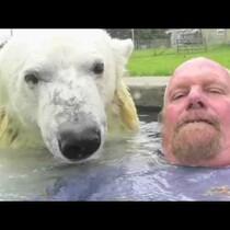 Polar Bear Hot Tub..CRAZY