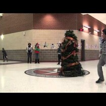 Christmas Tree Scares Teachers and Students!