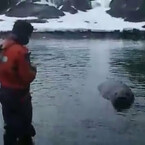Seal tries to Steal Boat!!