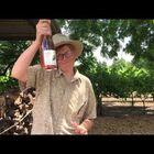 Brett Dennen music maker and wine maker!