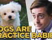 Dogs are Practice Babies