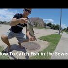 How To Catch a Fish In The Sewer