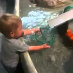 VIRAL VIDEO: Child tries to fill a wire bucket with water: